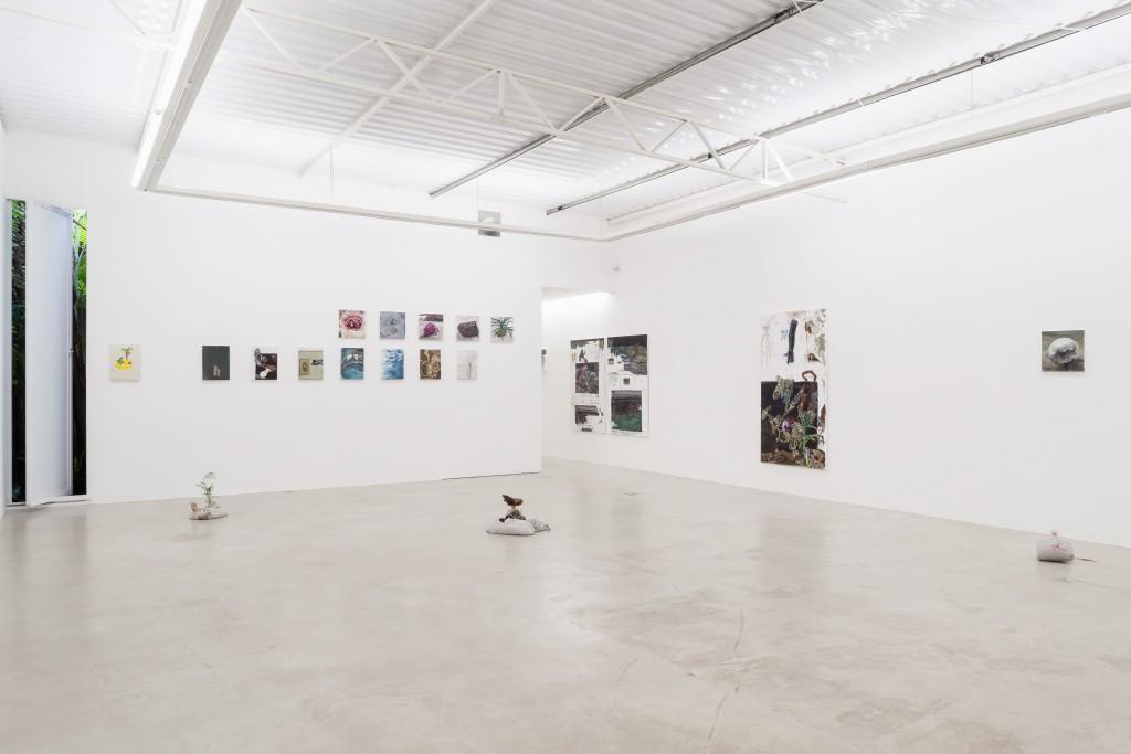 Bruno Drolshagen, installation view